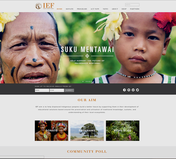 Screenshot of the IEF website homepage design layout